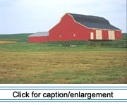 This large gambrel-roofed barn with a shed addition is typical of valley hay and grain barns constructed during the early 20th century.